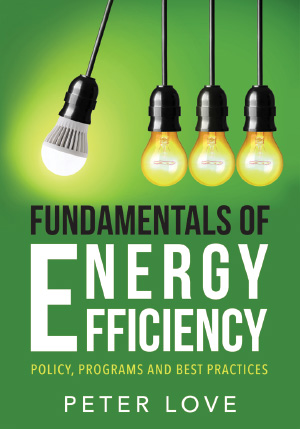 Fundamentals of Energy Efficiency: 		  Policy, Programs and Best Practices 			  by Peter Love